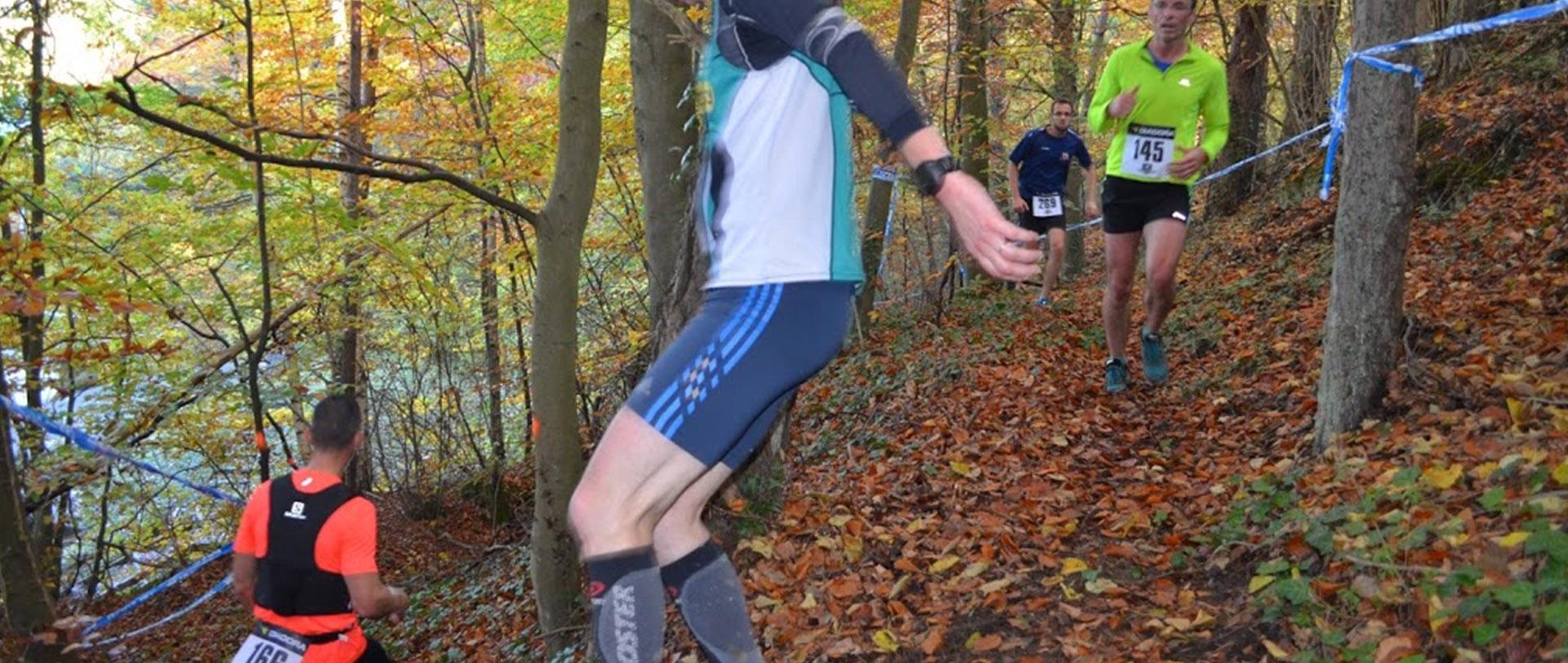 Trail dans l'Oise (Verberie) - 1er novembre 2018